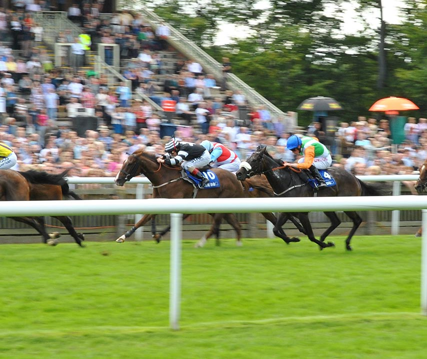 Races at Newmarket